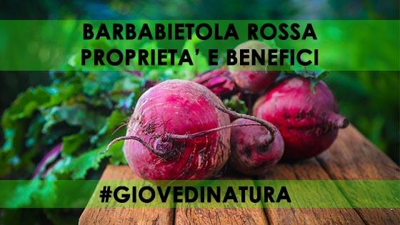 BARBABIETOLA ROSSA PROPRIETA' E BENEFICI