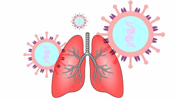 polmone in medicina tradizionale cinese